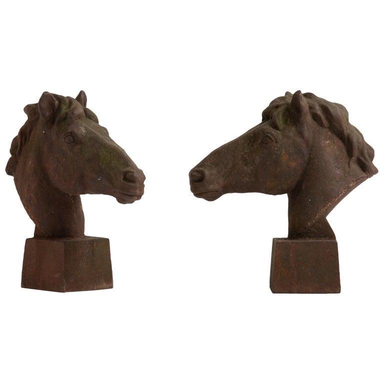 Iron Horse Bust, England, circa 1960 For Sale