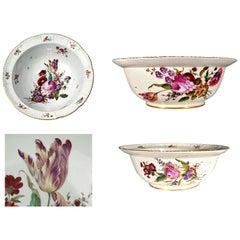 German Porcelain Large Botanical Bowl or Basin, Ludwigsburg, circa 1780