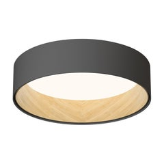 DUO Ceiling Light in Charcoal Grey by Ramos & Bassols