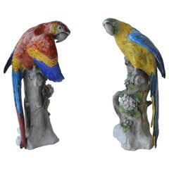 Pair of German Porcelain Models of Parrots
