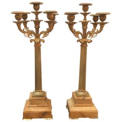 Pair of 19th Century French Gilt Bronze and Siena Candelabra