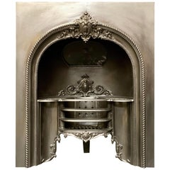 19th Century Victorian Cast Iron Fireplace Insert