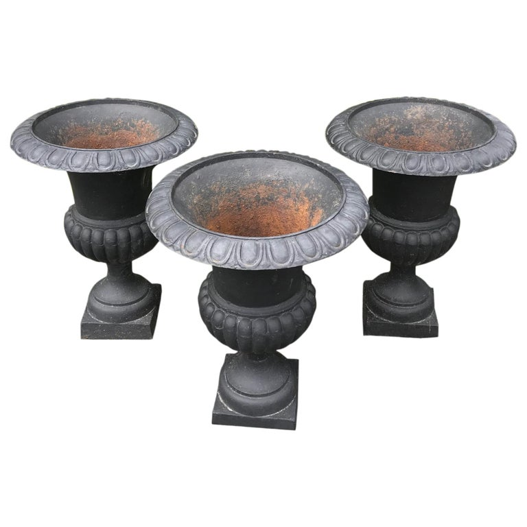 Cast Iron Neoclical Urn Planters