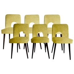 """Midcentury """"Shell"""" Chairs in Mustard Gold Velvet by Leśniewski, 1960s, Set of 6"""
