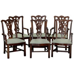 Six Vintage Chippendale Style Carved Mahogany Ribbon Back Dining Armchairs