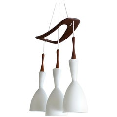 French Midcentury Biomorphic Pendant Light Chandelier, Teak and Glass Shades