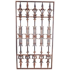 Early 20th Century French Cast Iron Door Fence or Grill.