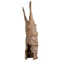 Organic Modern Vintage Dutch Natural Elm Tree Trunk Sculpture Holland circa 1920