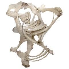 Bone Armchair