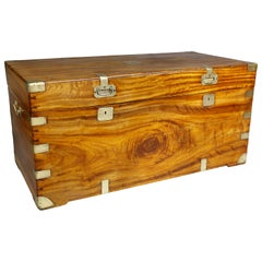 Chinese Export Camphorwood Trunk