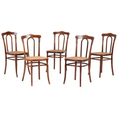 Set of Five Bentwood Chairs by Jacob & Josef Kohn Wien Austria, 1890s