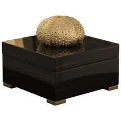 Ebony Square Box with Gold Sea Urchin