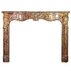 Fine Regency Period Antique Fireplace Surround in Royal Marble