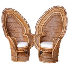 Pair of Exceptional Peacock Chairs