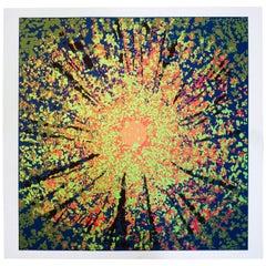 "Jon D'Orazio ""Radiance"" Serigraph, 1980"