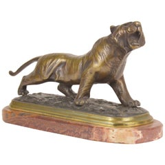 Patinated Art Deco Bronze Sculpture Representing a Roaring Tiger, 20th Century