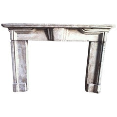Louis XIV Style Fireplace in Cast Stone Late 19th Century from France