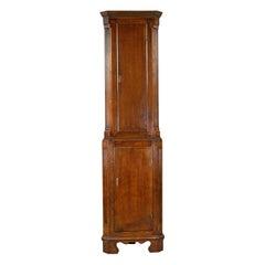 Tall, Narrow Antique Corner Cabinet, Edwardian, Georgian Revival, Oak