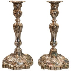 Regency Period Rococo Revival Sheffield Plate Candlesticks by T and J Creswick