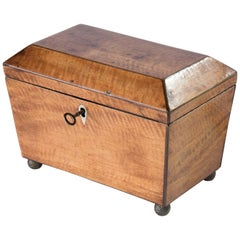 Regency Mahogany Sarcophagus Tea Caddy
