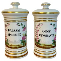 Pair of P. V. Limoges Floral Painted Apothecary Jars