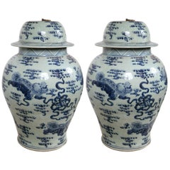 Pair of 20th Century Chinese Blue and White Covered Jars