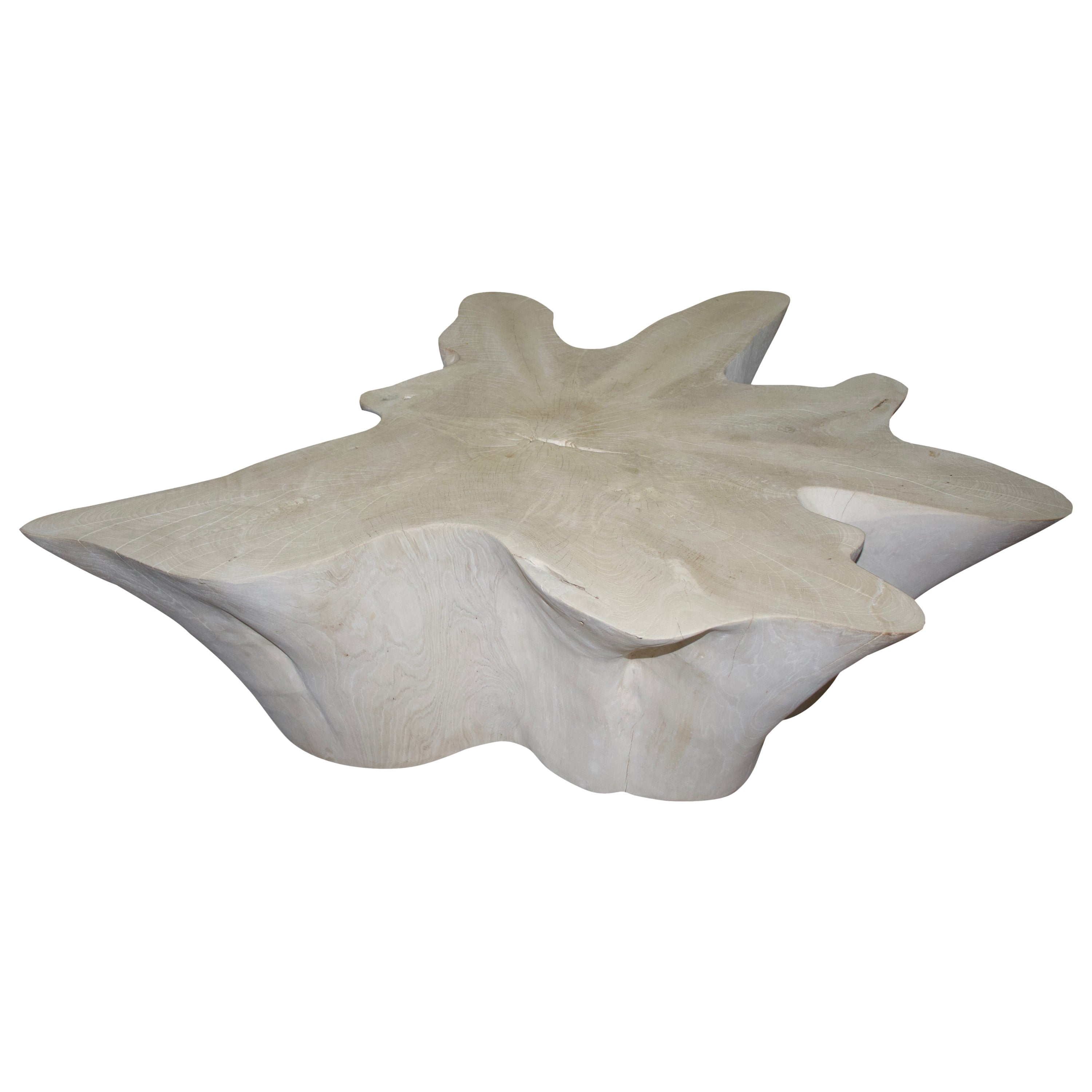 Andrianna Shamaris Butterfly Shaped Bleached Teak Wood Coffee Table