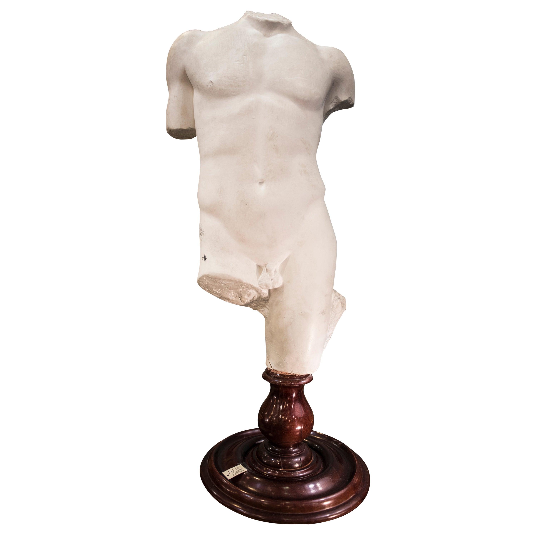 19th Century French White Gesso Torso Sculpture, Academicist, circa 1890