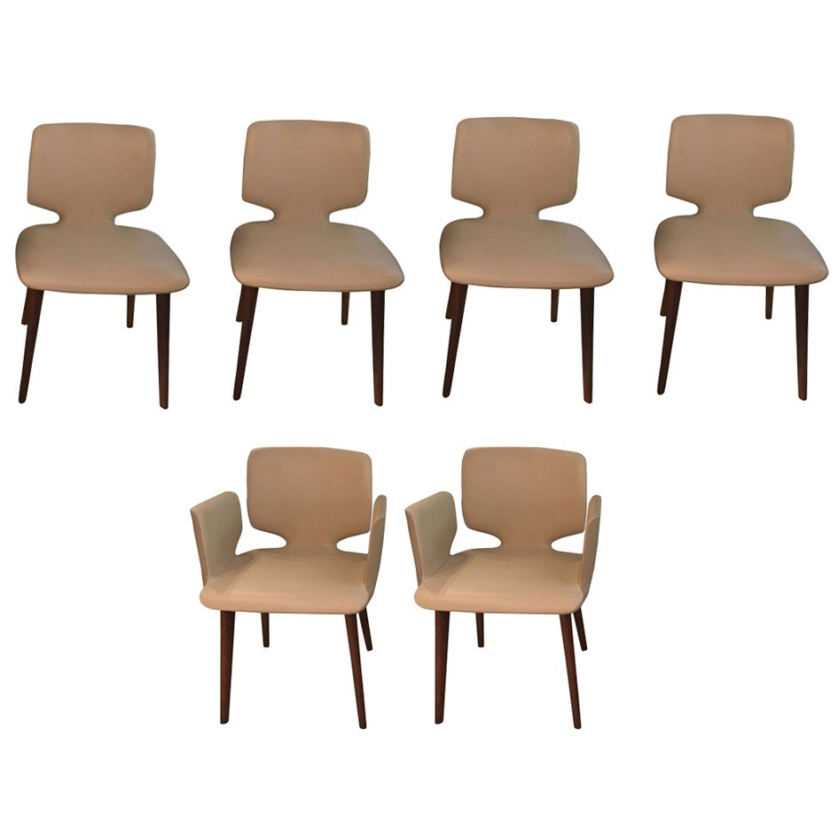 Set of 6 Contemporary White & Taupe Leather Dining Chairs with Walnut Wood Legs