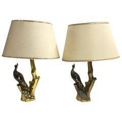 Vintage Brass Peacock Table Lamps by Willy Daro, 1970s