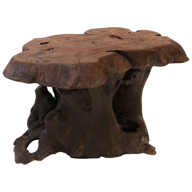Vintage Dark Brown Tree Trunk Coffee Table