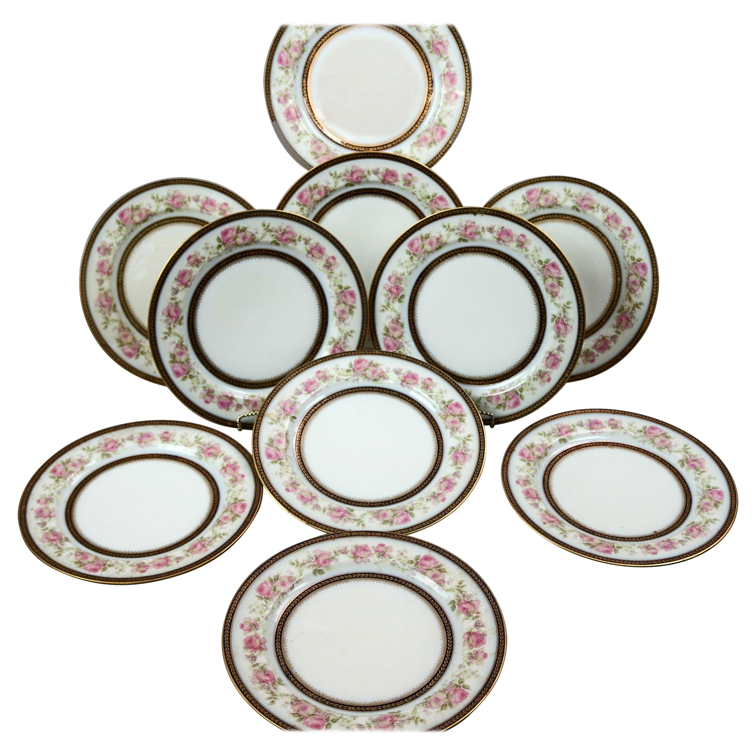Set of 10 French Haviland Limoges Floral Hand Painted Porcelain Plates