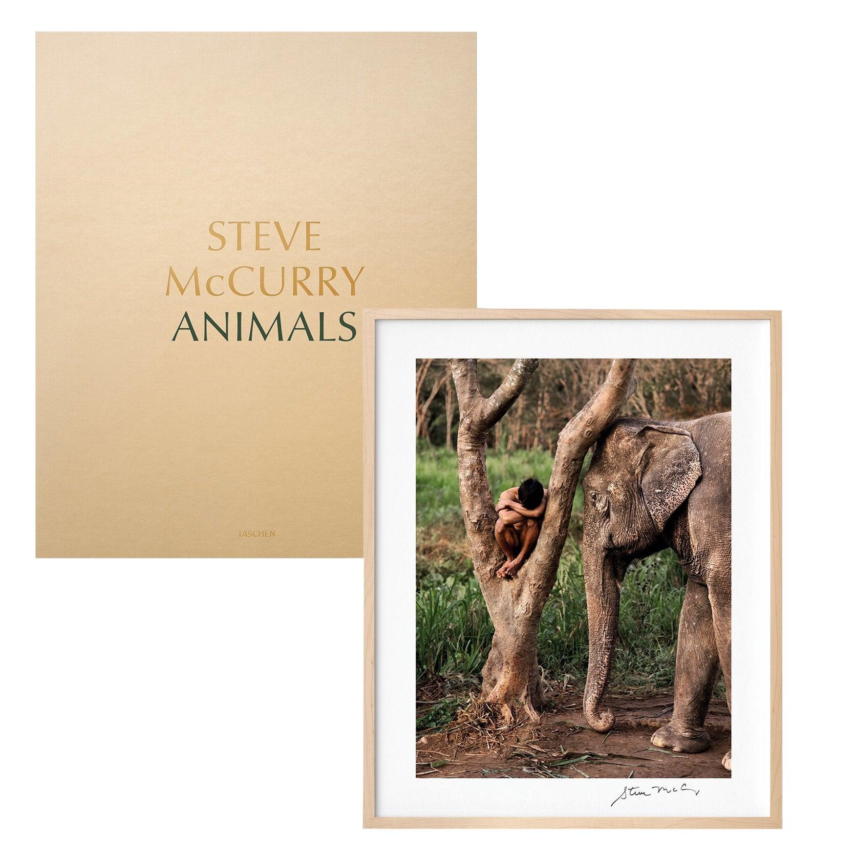 Steve McCurry, Animals, Art Edition No. 1-100 'Chiang Mai, Thailand, 2010'