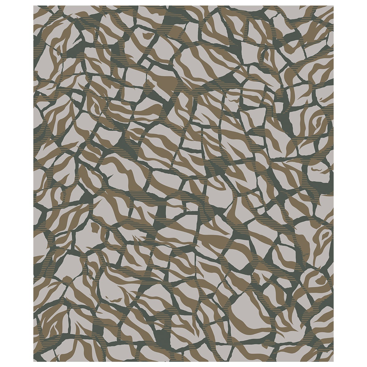 Tigertwiga Rug in Wool and Bamboo Silk by Roberto Cavalli Home Interiors