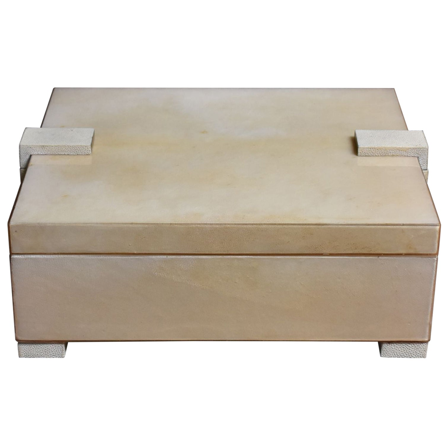 Large Parchment and Shagreen Box
