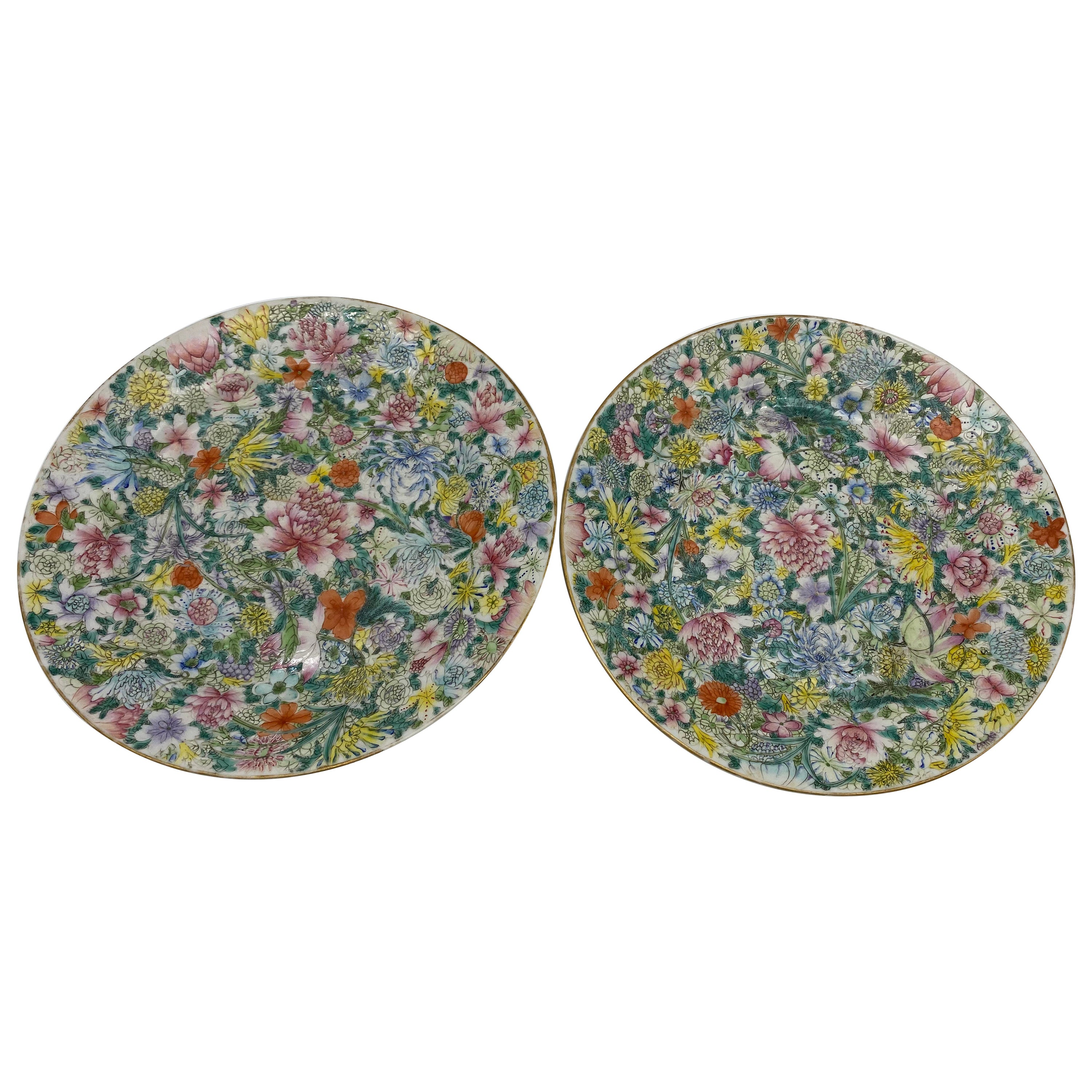 Pair of 19th Century Chinese Flower-Blossom Porcelain Plates