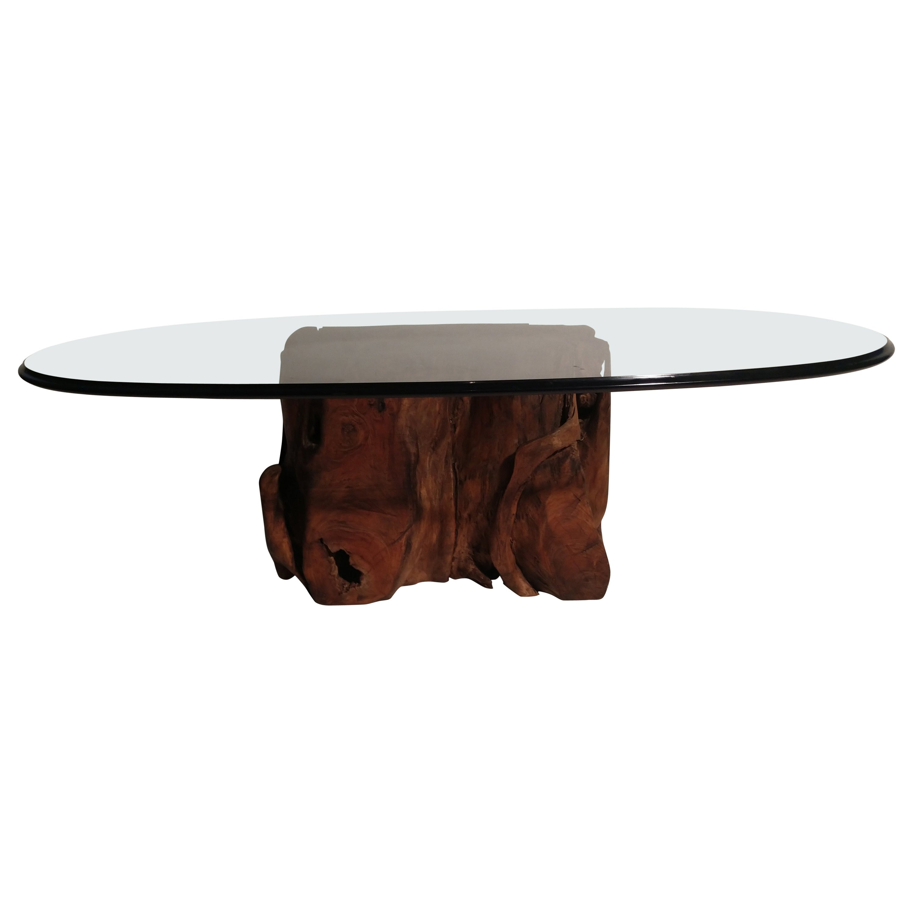 Mid-Century Modern Organic Tree Root Base Cocktail Table