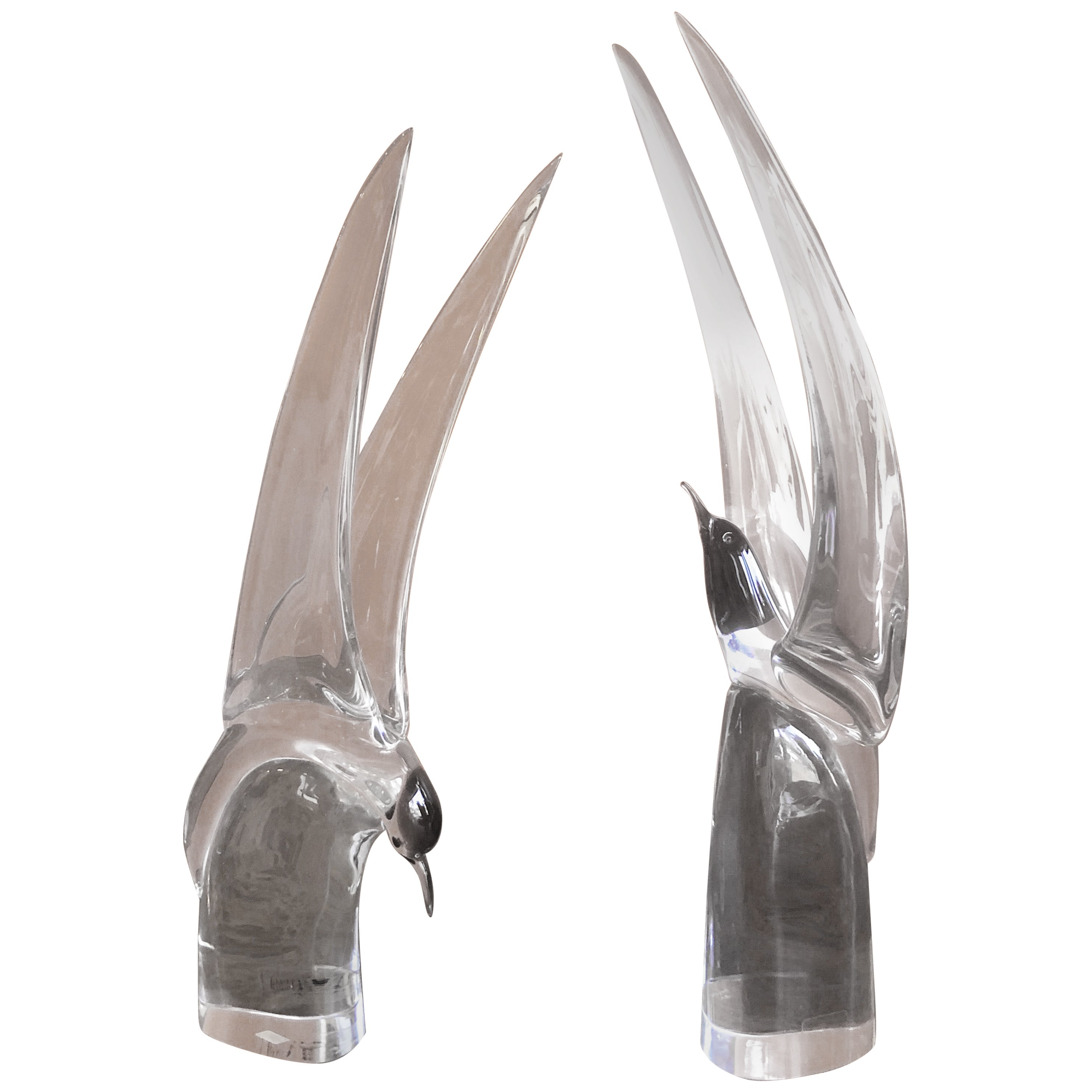 Pair of Art Glass Terns/Sea Gulls by Livio Seguso for Murano Glass Studios