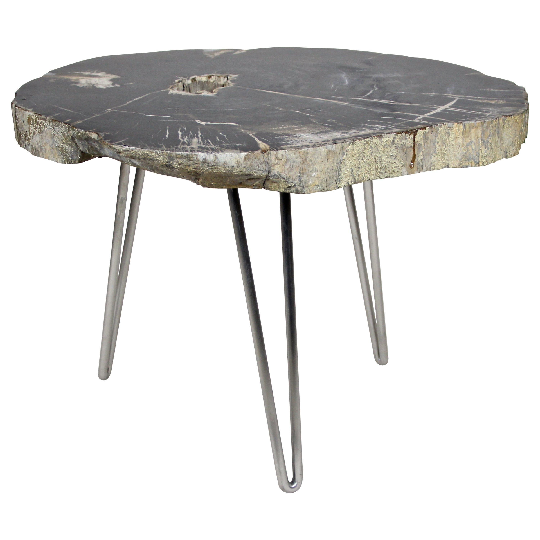 Petrified Wood Coffee Table on Stainless Steel Feet, Organic Modern
