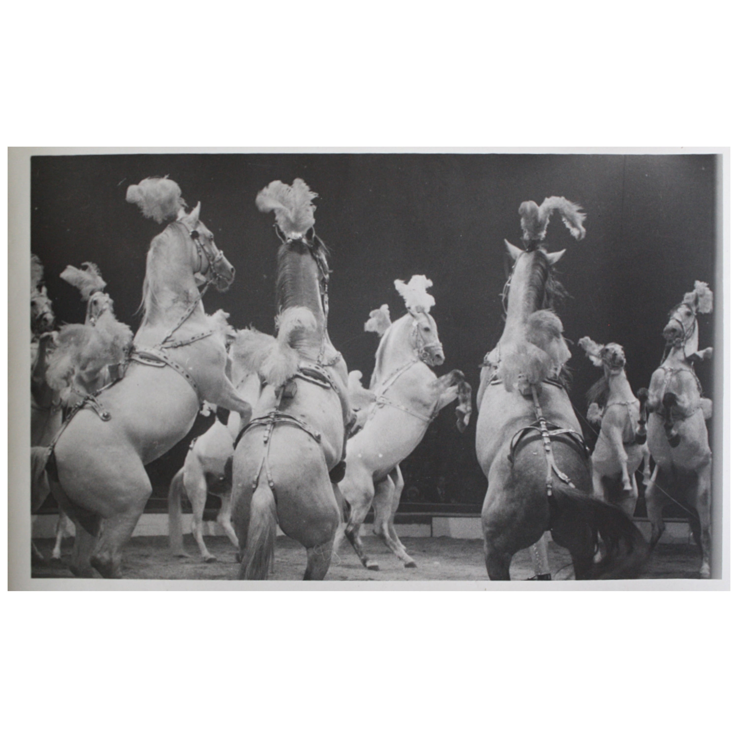 Circus Gelatin Silver Prints Photography in the Manner of Kurt Hutton circa 1940