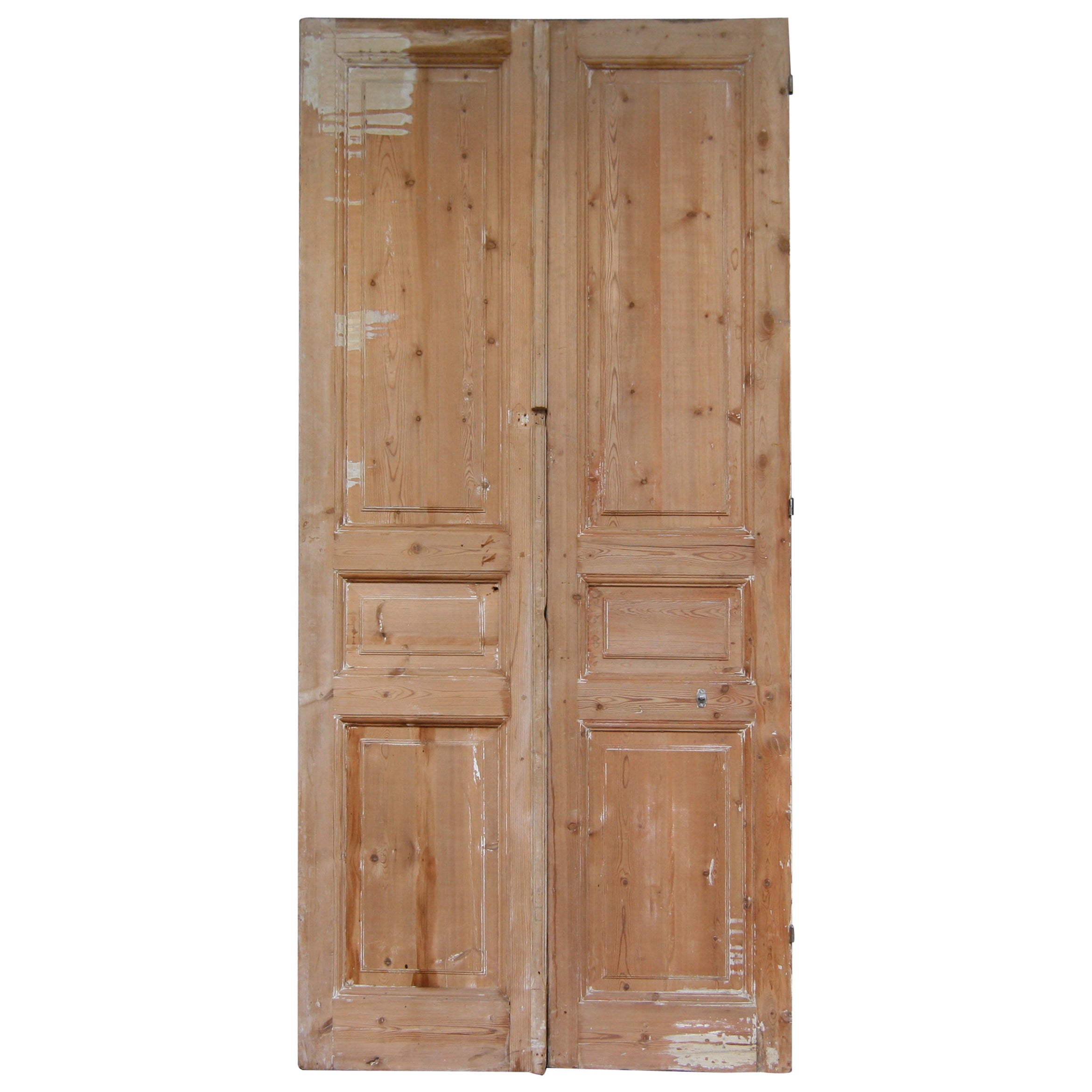Late 19th Century French Double Door Made of Pine