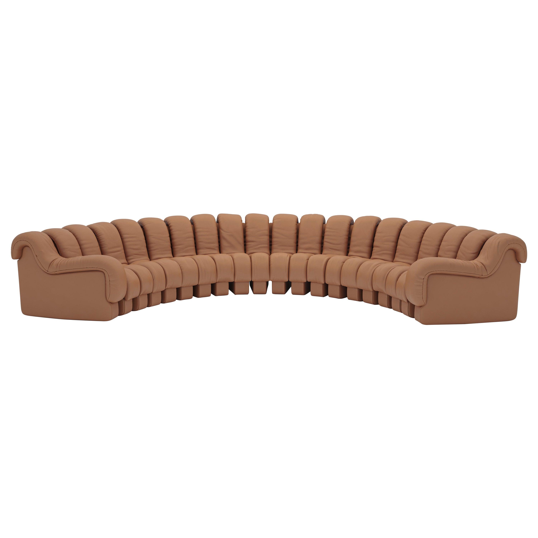 De Sede DS-600 Snake-Shape Modular Sofa in Hazel Leather and Adjustable Elements