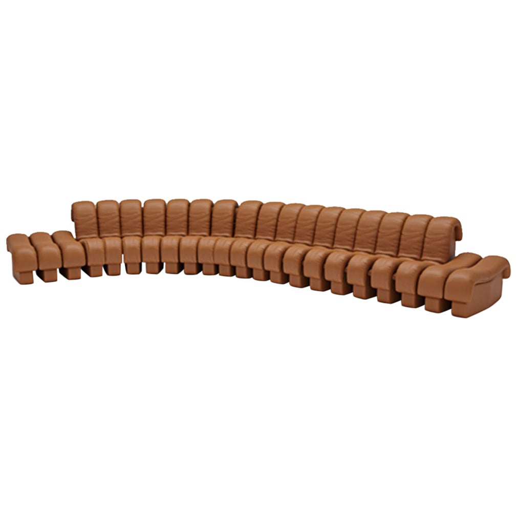 De Sede DS-600 Snake-Shape Modular Sofa in Brown with Adjustable Elements