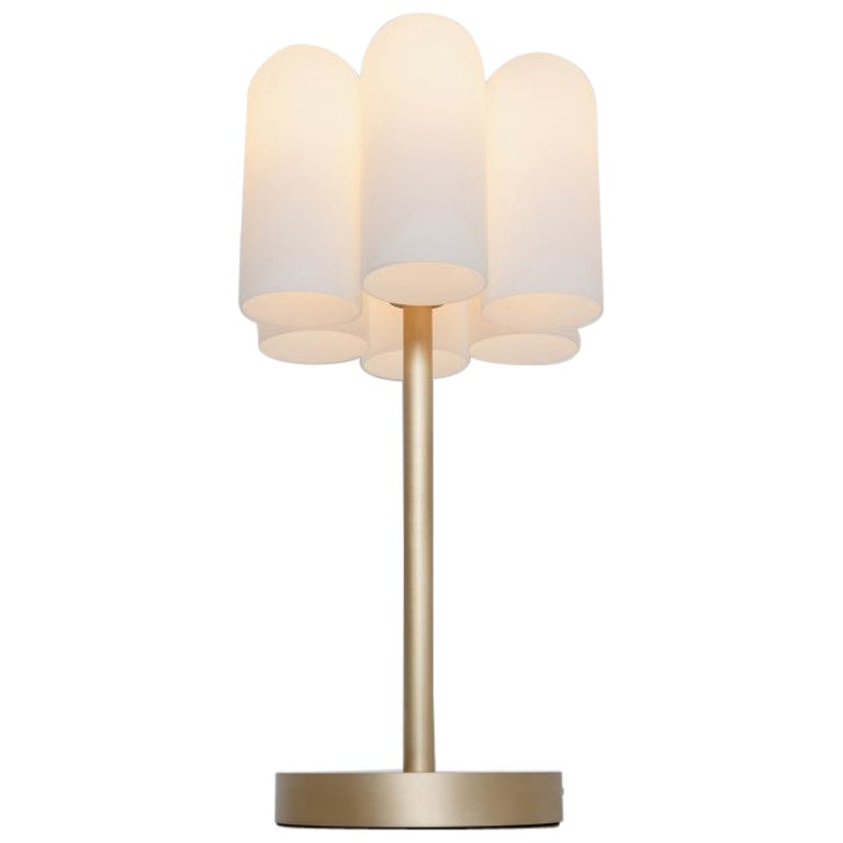 Contemporary Brass Table Lamp by Schwung