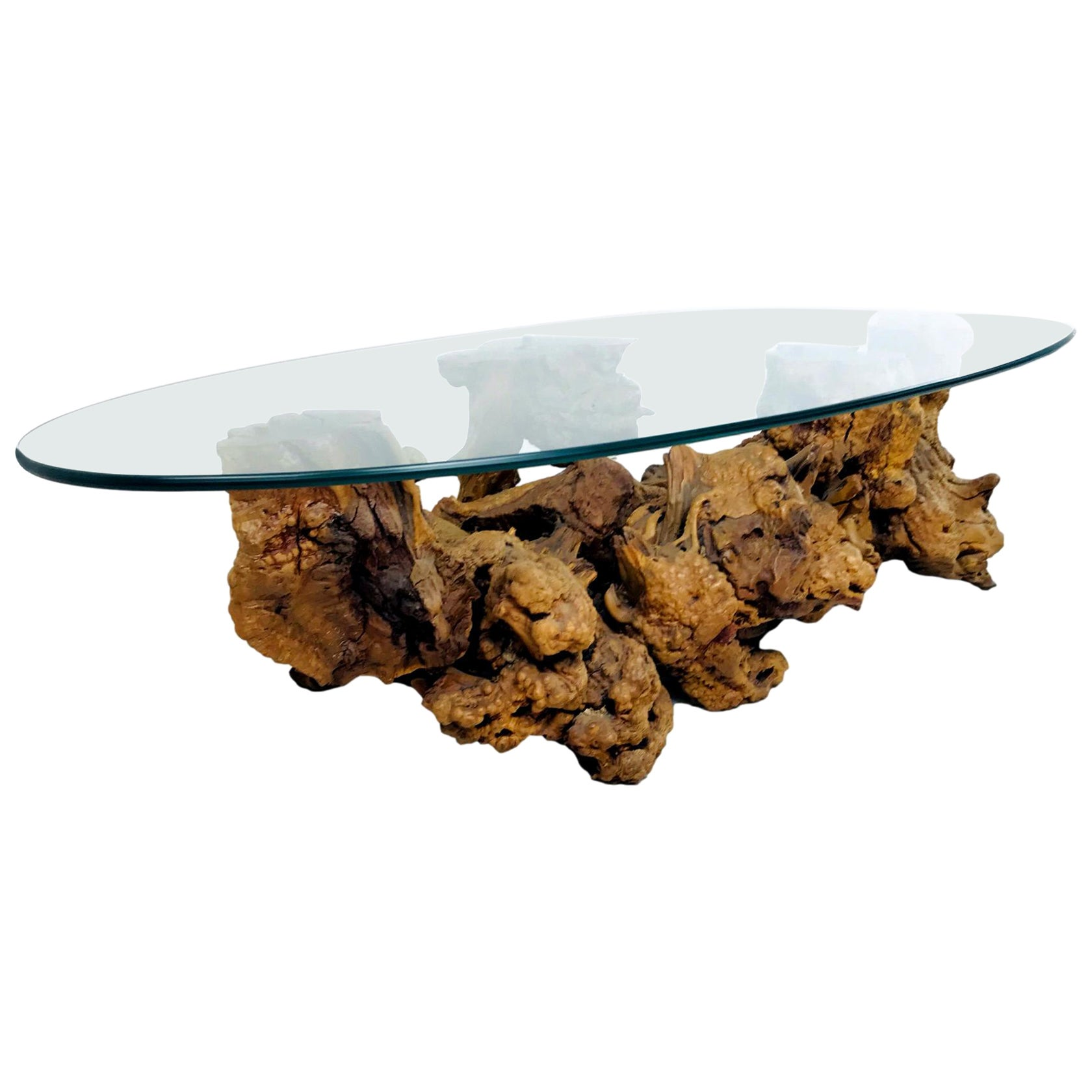 Burled Root Coffee Table with Glass Top