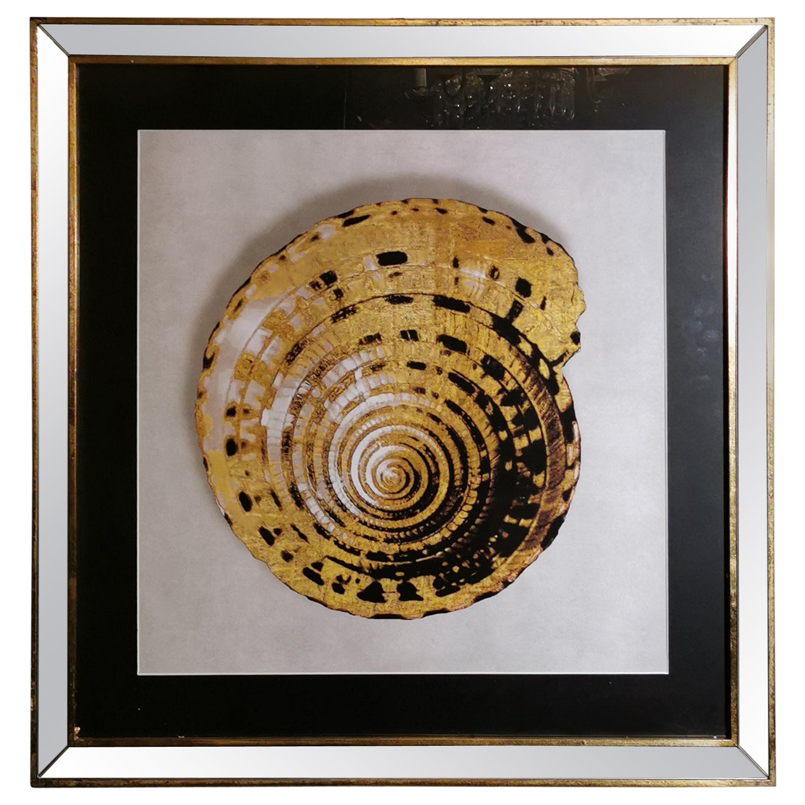 Contemporary Italian Golden Shell Print, Gilded Wood Frame with Mirror '1 of 4'