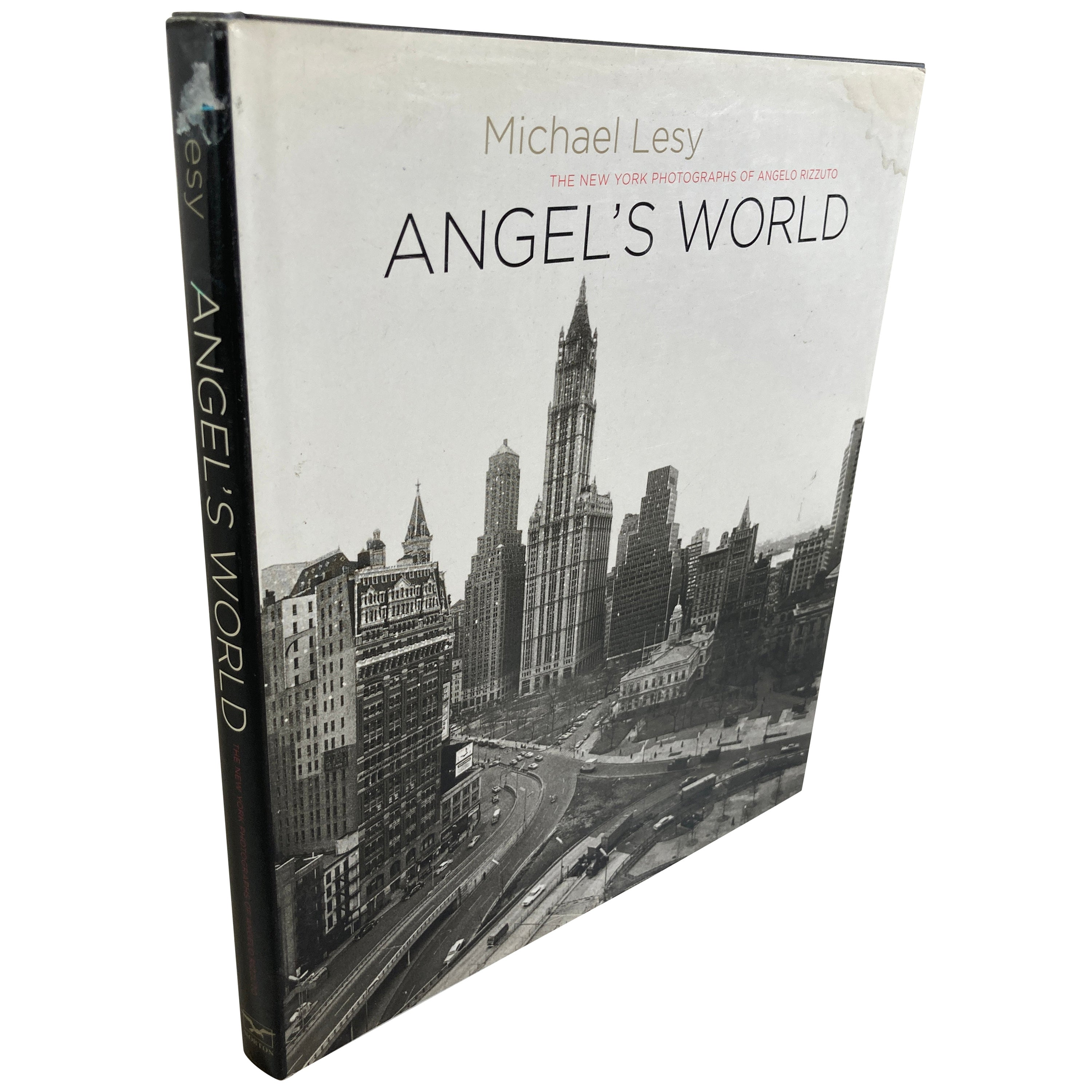 Angel's World the New York Photographs of Angelo Rizzoto. Lesy, Hardcover Book