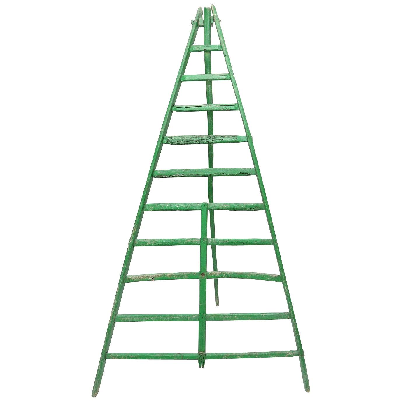 Rustic Green Fruit Picking Ladder