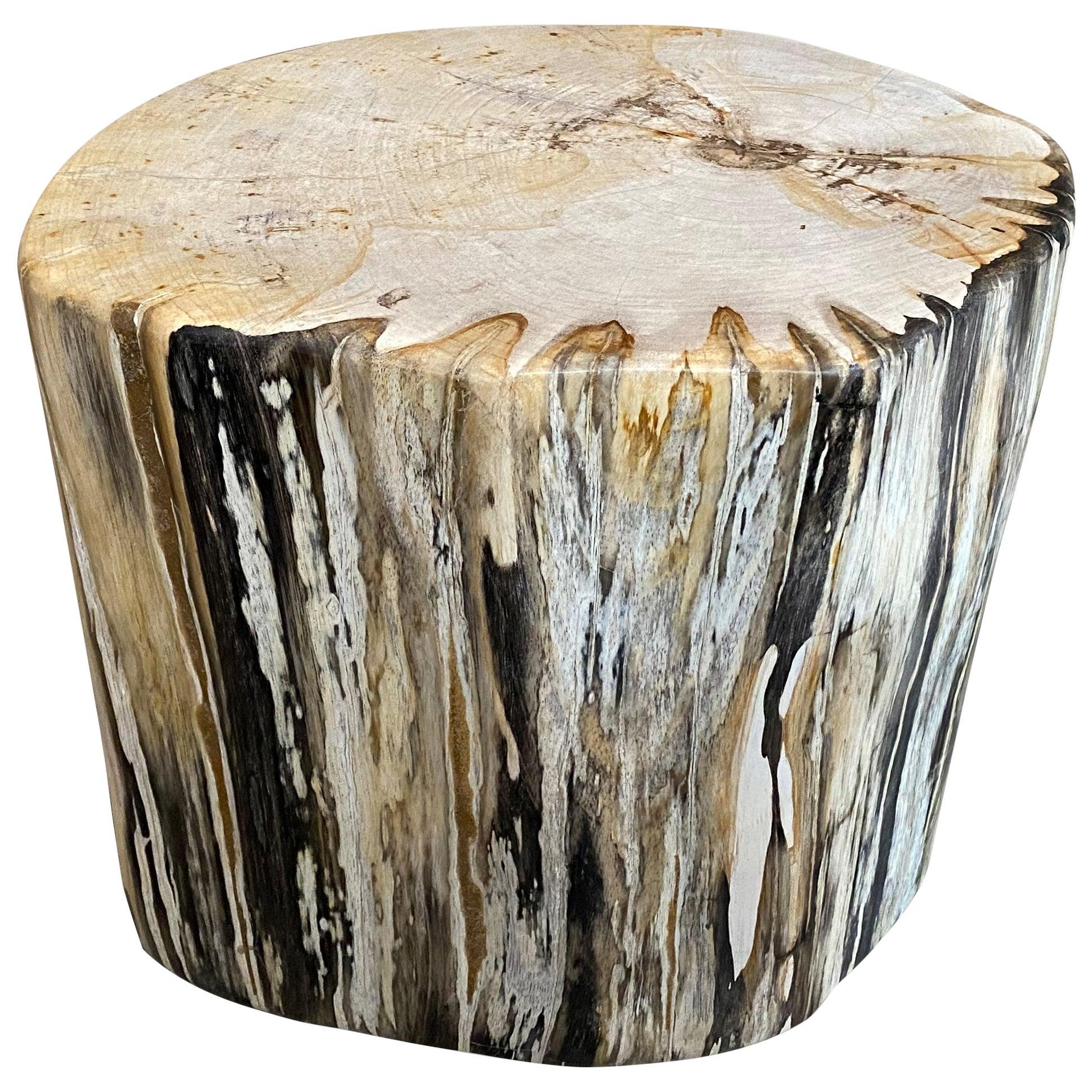 Andrianna Shamaris High Quality Petrified Wood Side Table or Coffee Table