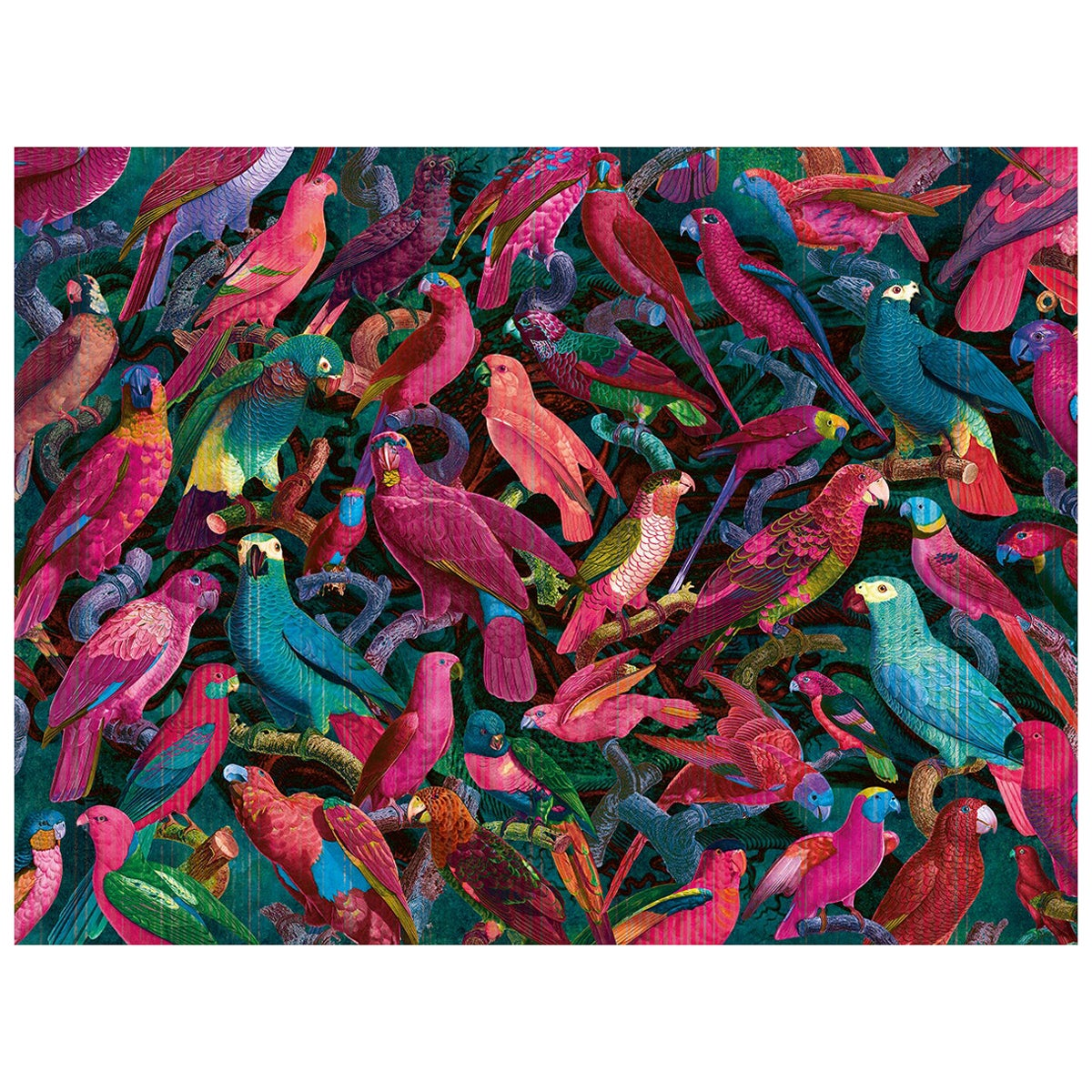 Parrot Imperialis - custom mural wallpaper (fuchsia and blue)
